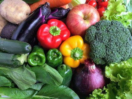 沢山の野菜が集まった写真