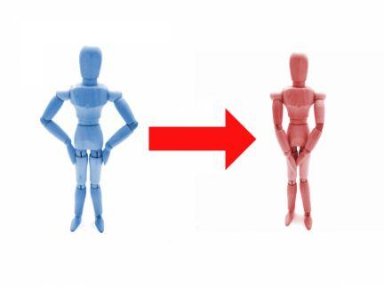 男性の人形から女性の人形へ矢印(→)を示し、性転換を表す写真