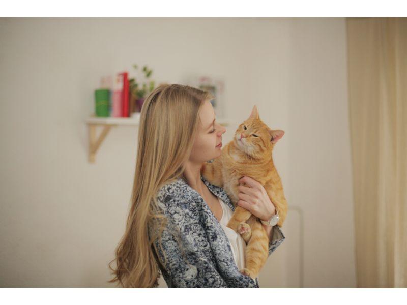 猫を抱く女性の写真